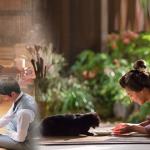 【夏目漱石の妻】第4話・最終回の動画を無料で!おすすめの方法は?